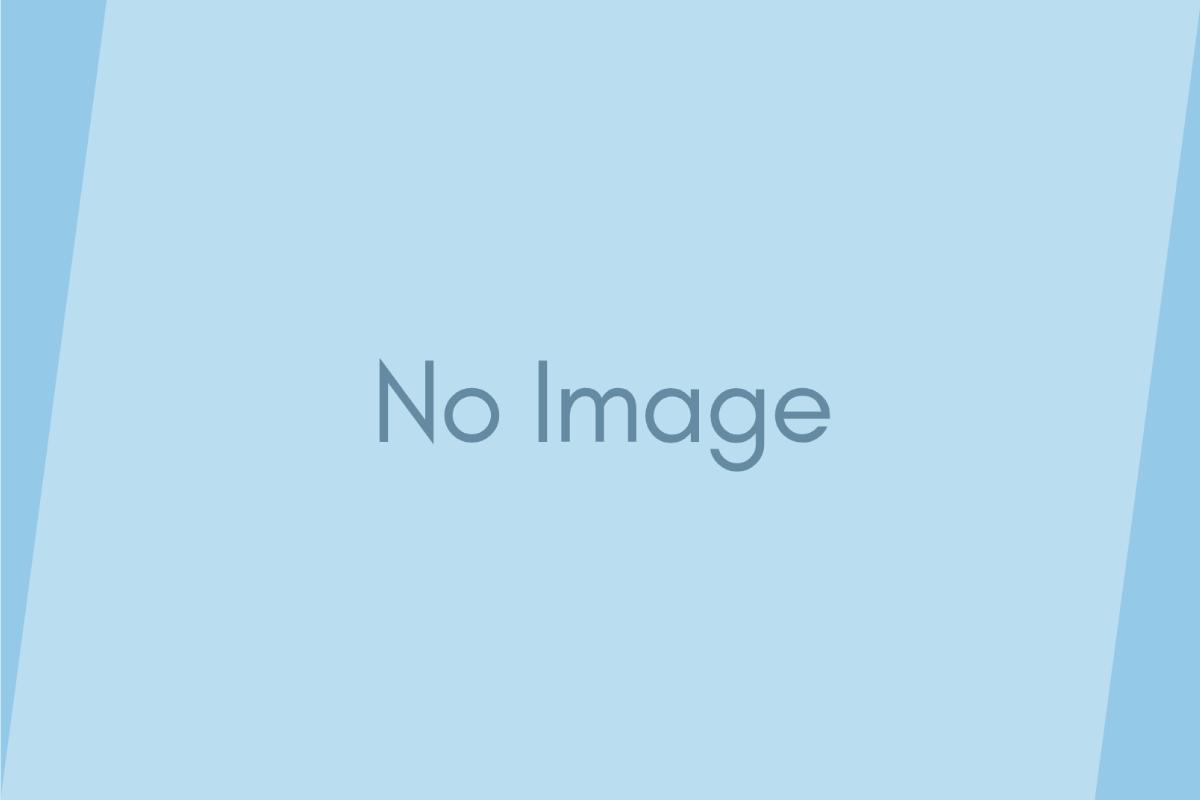 ブルーグリーン、ホワイト…… クラゲ